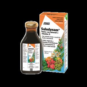 SALUDYNAM  250 ML